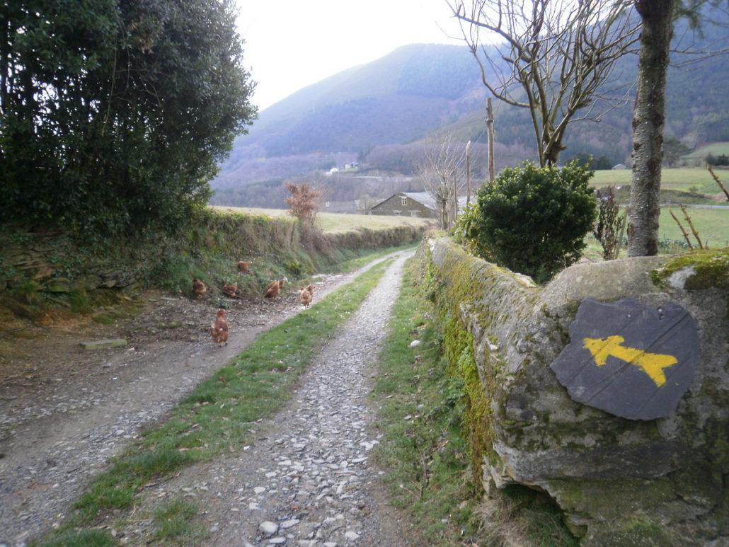 Camino Primitivo - Etapa A Fonsagrada - O Cádavo